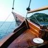 Атмосферо - стойкие, влагостойкие, яхтные (16)